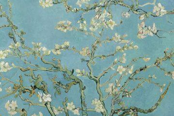 Van Gogh Almendro en flor 1890 mini