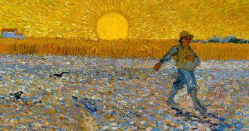 C6 Van Gogh, Arlés y el amarillo mini